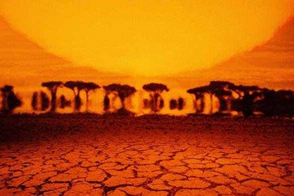 heatwave-975381.jpg